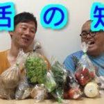 【豆知識】トツゲキ!オスペンギン 第55弾 生活の知恵 茨城県水戸市