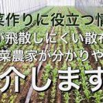 野菜作りに役立つ情報!薬液が飛散しにくい散布方法を野菜農家が分かりやすく紹介します!